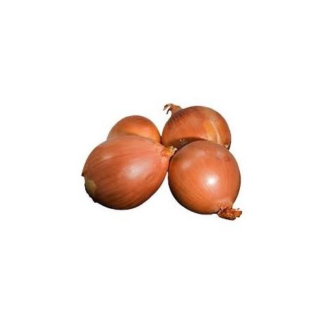 Cebolla seca -Ecoeduco- 1 kilo