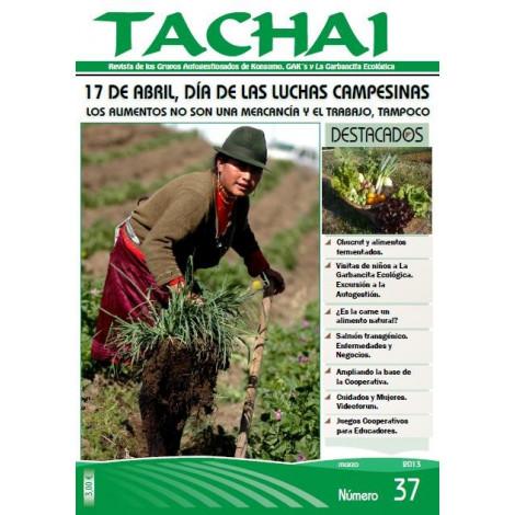 Revista Tachai nº 37_ Marzo 2013