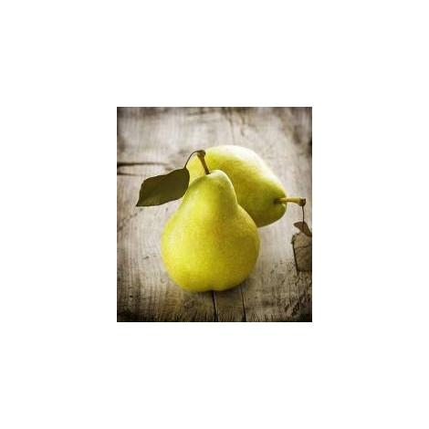 Pera blanquilla-FruitalpuntBio-1kg.