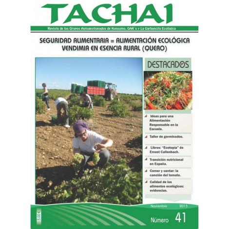 Revista Tachai 41_Noviembre 2013