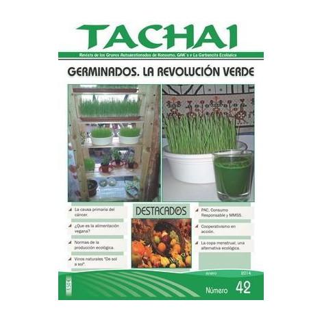 Revista Tachai 42 - Enero 2014