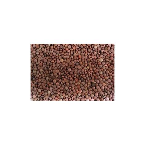 Lentejas Pardinas - Ecorazon Mancha - 1 kilo