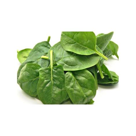 Espinaca -Bio Trailla- manojo 250 gr