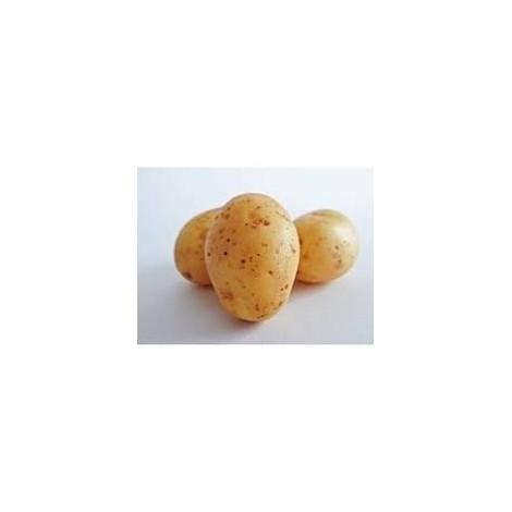 Patata Blanca -Ecoeduco - 1 kilo