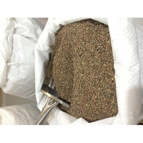 Lenteja Pardina - Jesús Ochoa- granel 1 kg