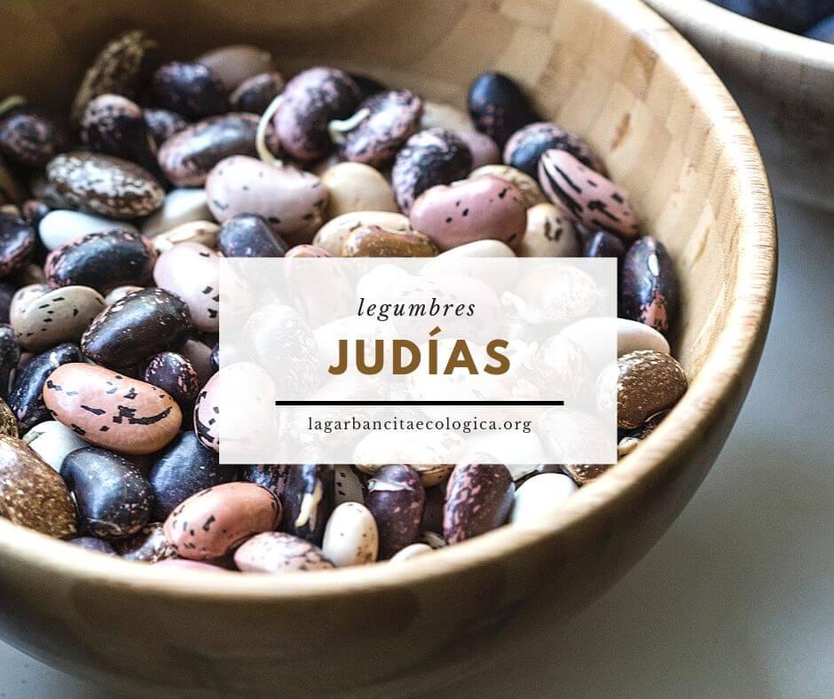 Judías, habichuelas, fabes, alubias, frijoles ecológicos