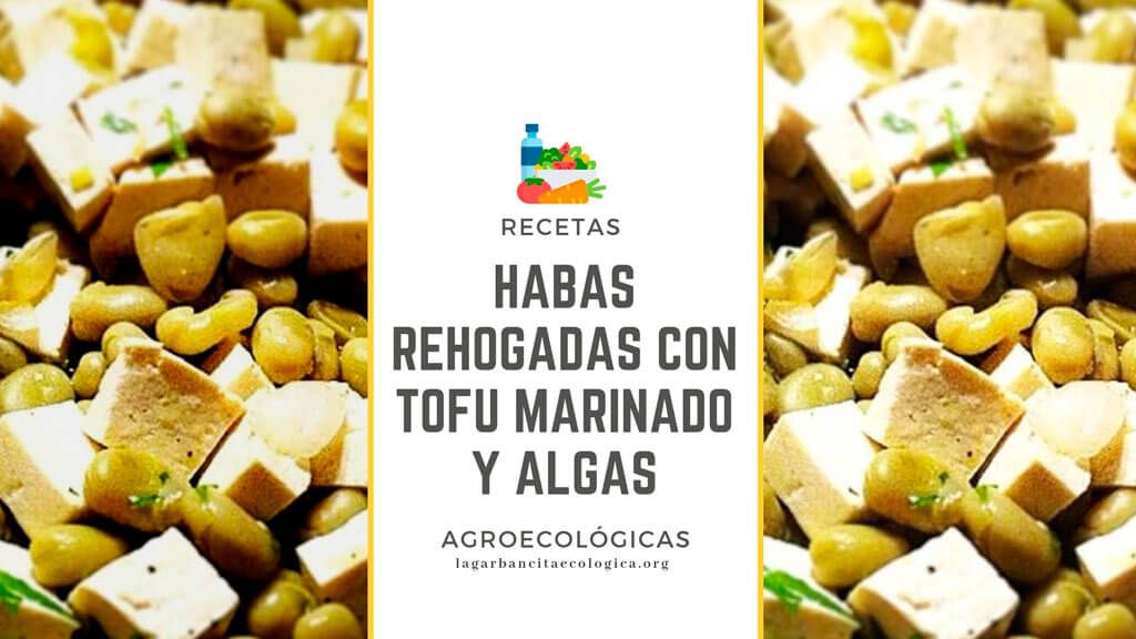 Habas Rehogadas Con Tofu Marinado Y Algas La Garbancita
