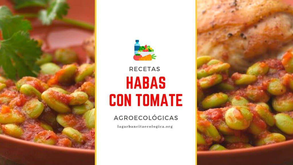 habas-con-tomate receta ecologica