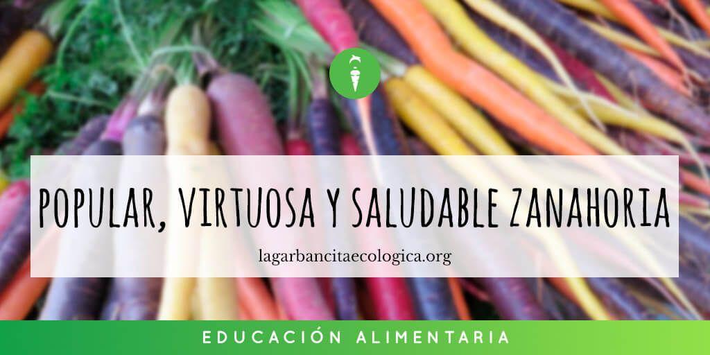 La Popular Virtuosa Y Saludable Zanahoria La Garbancita Ecologica Las zanahorias son uno de las verduras o vegetales más conocidas y consumidos en todo el mundo. saludable zanahoria